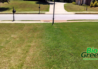 Lawn Problems? Call your local Bio Green service.