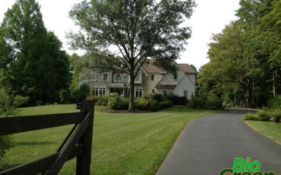 Bio Green Lawn Care Services