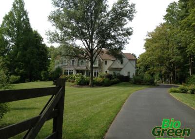 Bio Green Lawn Care Services