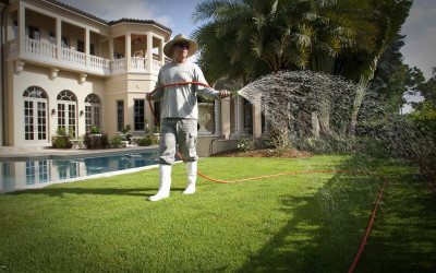 Bio Green Lawn Treatment Services